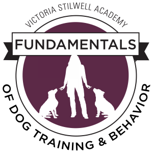 fundamentals of dog training course