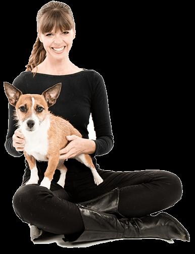 home victoria stilwell academy for dog training behavior